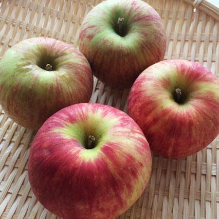 りんご010
