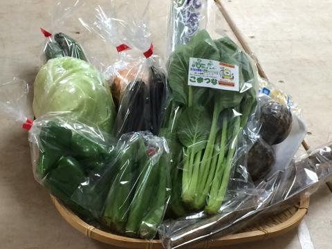 野菜セット1003