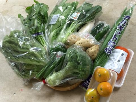 10月10日野菜