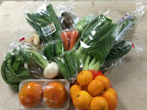 10月17日野菜