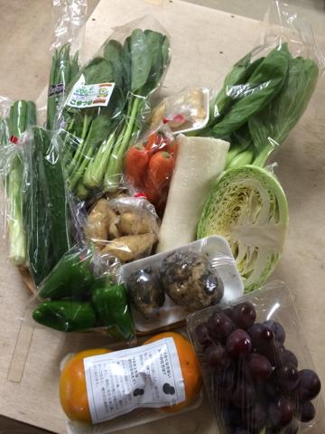 10月21日野菜
