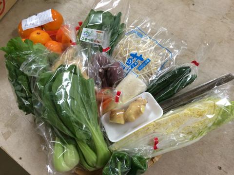 10月28日野菜