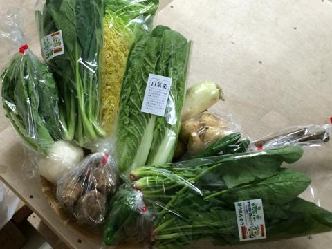 10月31日野菜