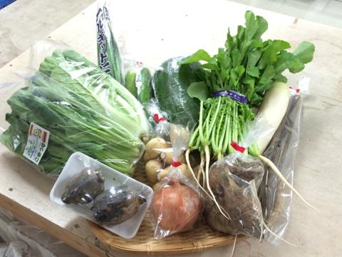 1006野菜