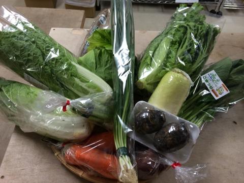 11月21日野菜