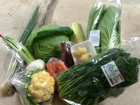11月27日野菜