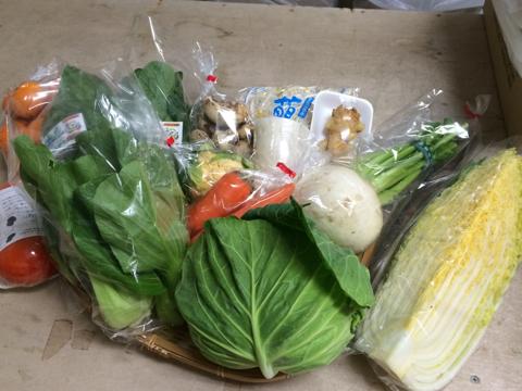 12月12日野菜