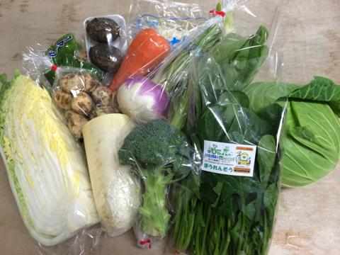 12月16日野菜