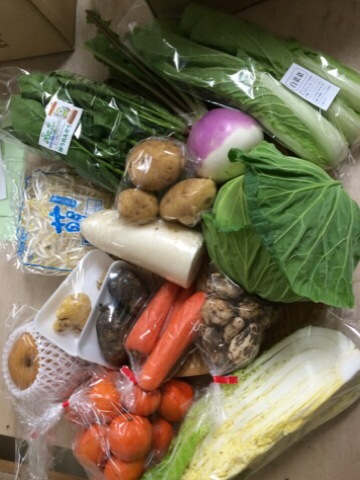 12月18日野菜2