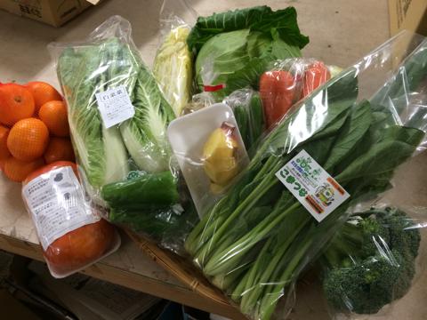 12月5日野菜