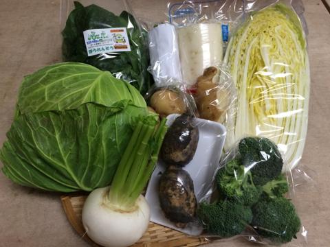 1月23日野菜