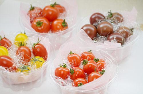 トマト4種11