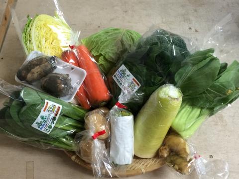 2月2日野菜