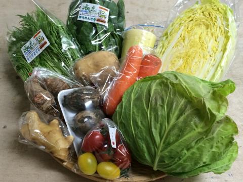 2月6日野菜