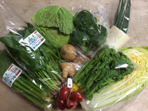 2月10日野菜