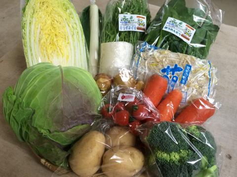 2月12日野菜