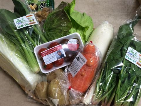 2月27日野菜