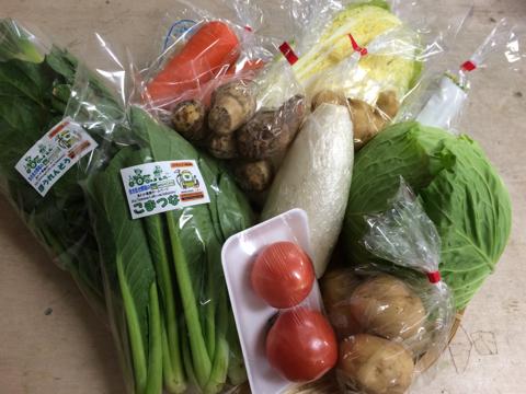 2月3日野菜