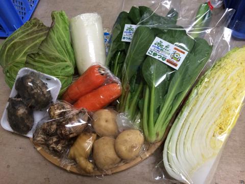 2月5日野菜