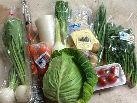 3月19日野菜
