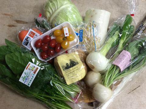 3月20日野菜