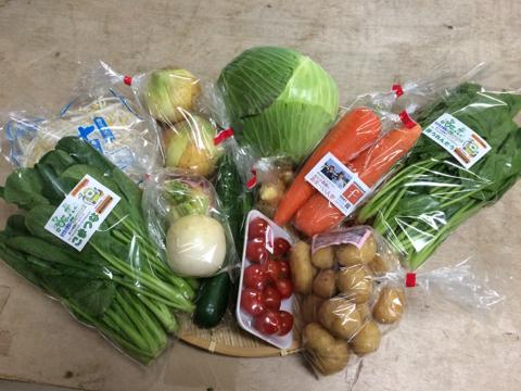 4月17日野菜