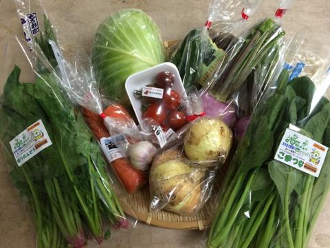 4月23日野菜