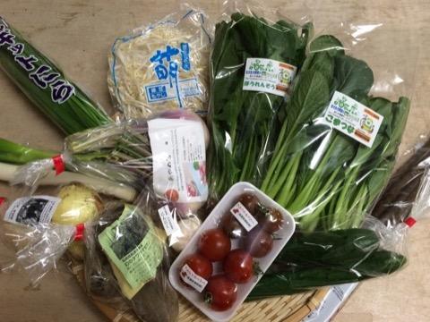 4月30日野菜