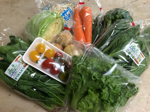 5月29日野菜