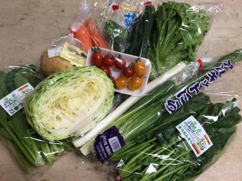 6月5日野菜