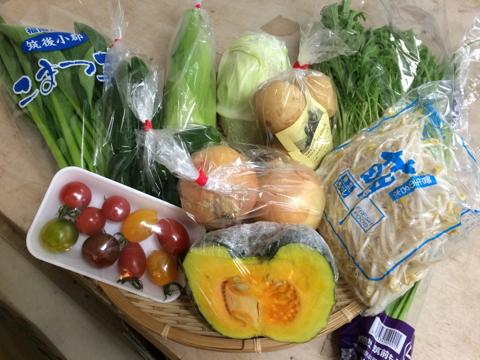 6月26日野菜