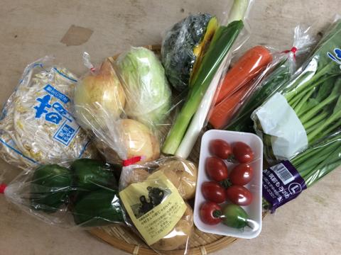 6月29日野菜