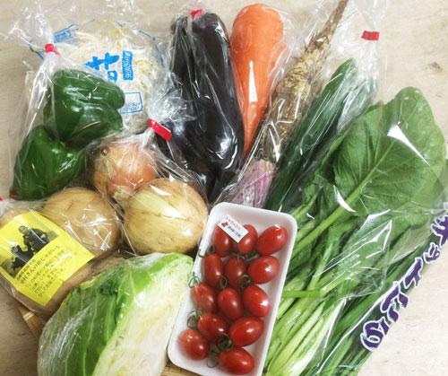 7月7日野菜