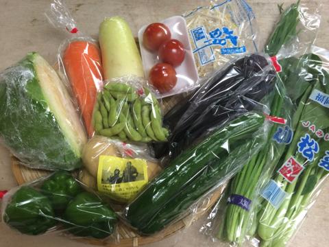 7月14日野菜