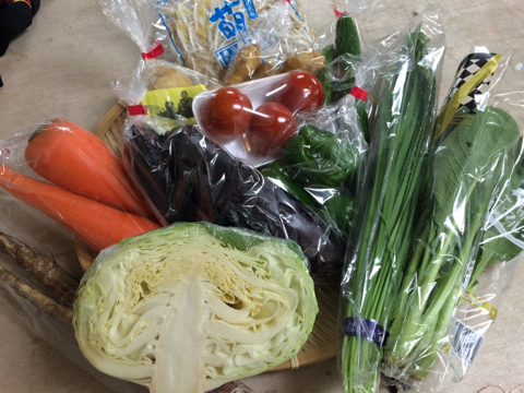 7月16日野菜