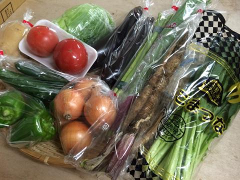 7月24日野菜