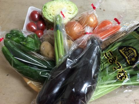 7月27日野菜