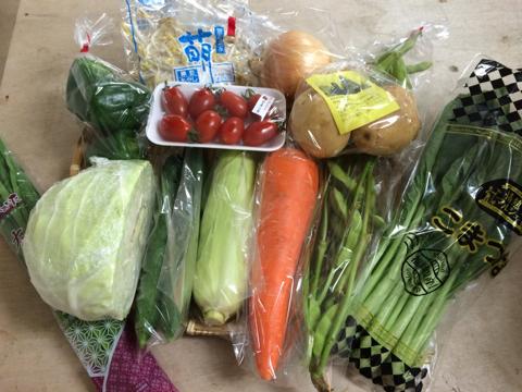 7月3日野菜