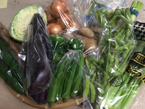 7月30日野菜