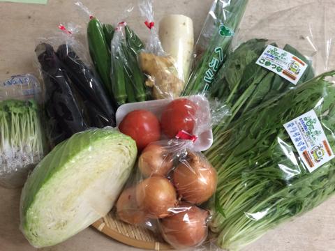 8月10日野菜