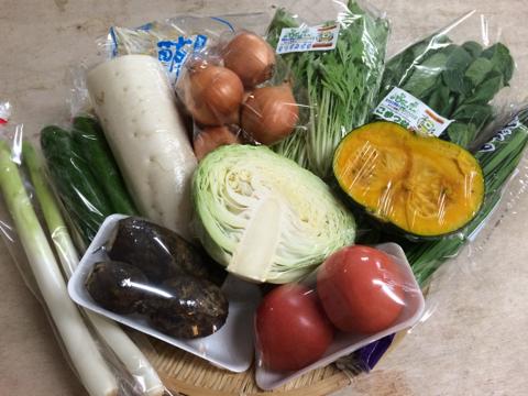 8月17日野菜