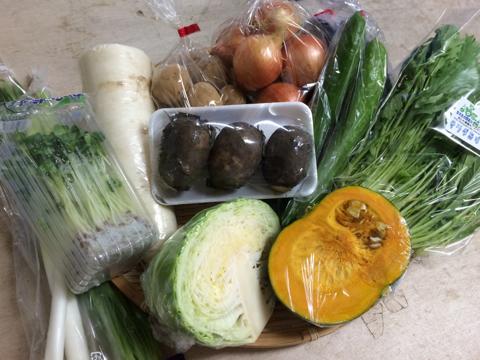 8月18日野菜