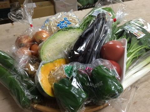 8月20日野菜