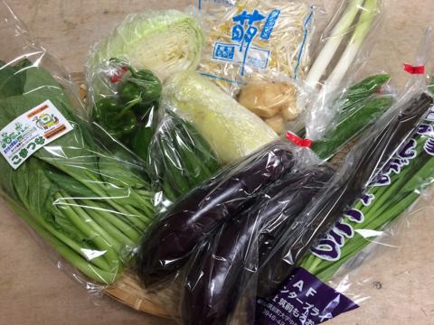 8月28日野菜
