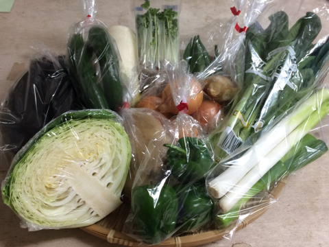 8月3日野菜