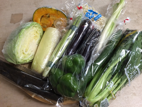 8月31日野菜