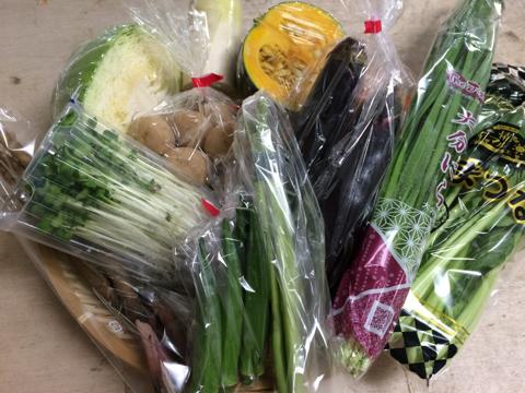 8月7日野菜