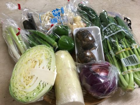 9月1日野菜