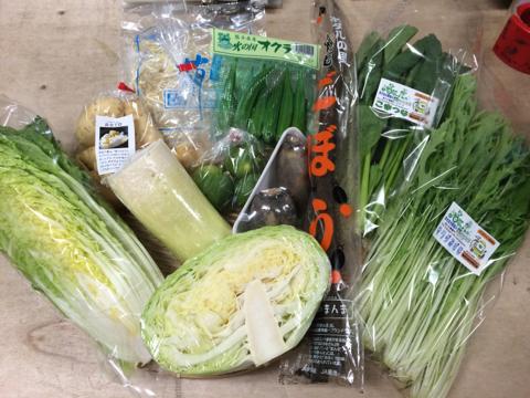 9月24日野菜