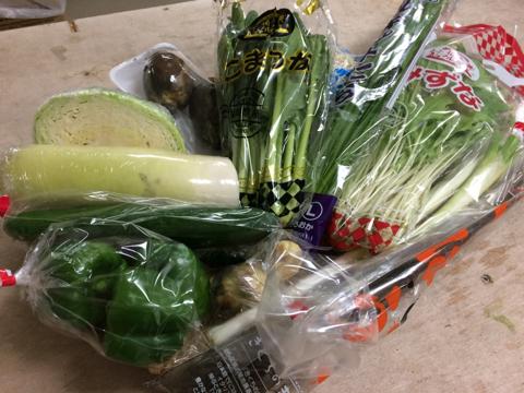 9月3日野菜